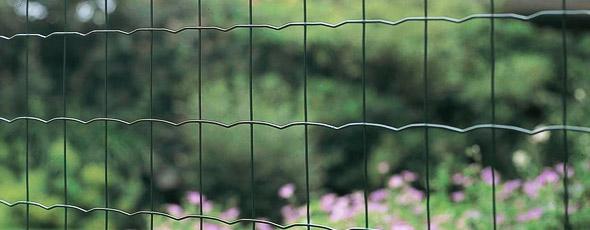 MALLA CMNET (TIPO PANTANET)